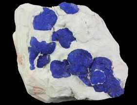 Buy Brilliant Blue Azurite Sun Cluster On Rock - Australia - #64288