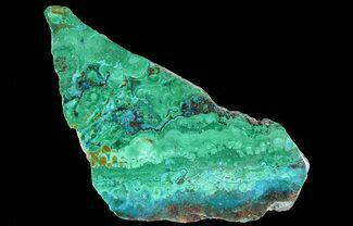 "Buy 3.3"" Polished Chrysocolla & Plume Malachite - Bagdad Mine, Arizona - #64921"
