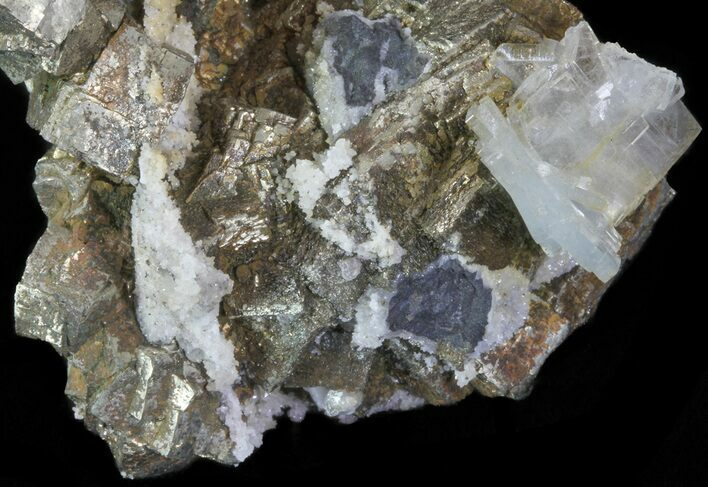 "2.8"" Blue Barite, Quartz and Pyrite Association - Morocco"