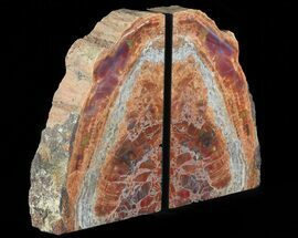 "8.9"" Tall, Colorful, Arizona Petrified Wood Bookends For Sale, #66152"