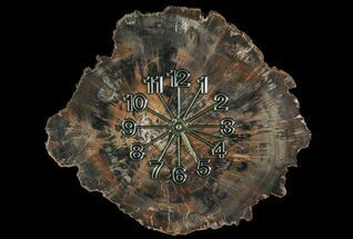 "Buy 11.7"" Wide Arizona Petrified Wood Clock - #66835"