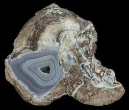 "3.3"" Dugway Geode (Polished Half) For Sale, #67499"