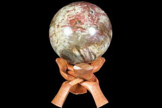 "Buy 3.7"" Colorful Petrified Wood Sphere - Madagascar - #67744"