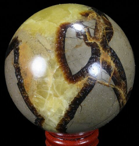 "2.65"" Polished Septarian Sphere - Madagascar"