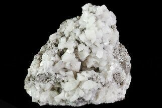Dolomite - Fossils For Sale - #68862