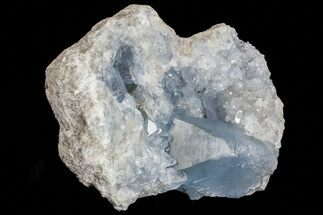 "5.3"" Blue Celestite Crystal Geode - Madagascar For Sale, #70826"