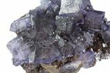 "3.9"" Cubic Fluorite Crystals on Sphalerite - Elmwood Mine - #71944-3"