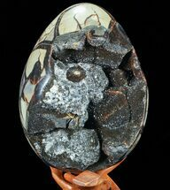 "Buy 8.2"" Septarian ""Dragon Egg"" Geode - Crystal Filled - #73780"