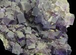 "4"" Cubic, Purple Fluorite Crystal Cluster - China - #73943-3"