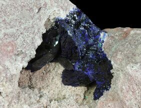 Azurite  - Fossils For Sale - #74688