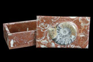 "5"" Fossil Goniatite Jewelry Boxes For Sale, #75581"