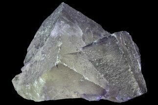 Fluorite - Fossils For Sale - #70059