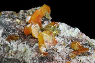 Wulfenite - Fossils For Sale - #76848