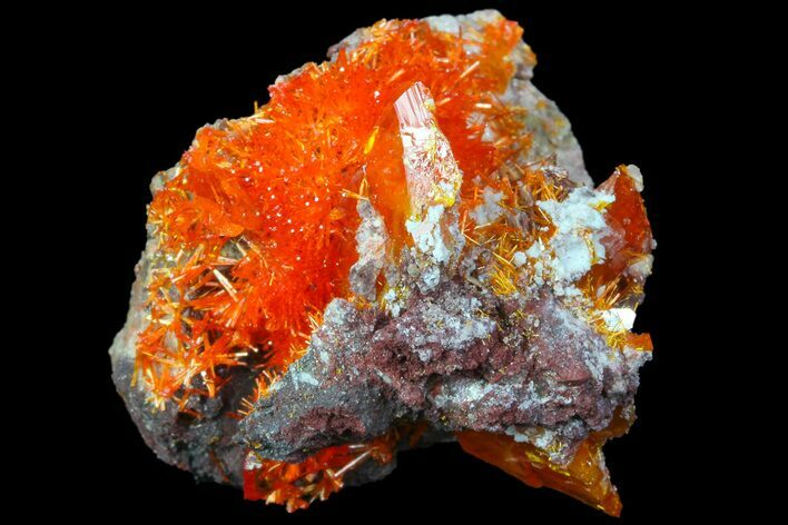 ".92"" Wulfenite Crystal Cluster - Rowley Mine, AZ"
