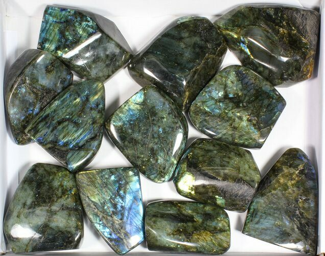 Wholesale Lot: 20 Lbs Free-Standing Polished Labradorite - 12 Pieces