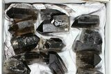 "Wholesale Lot: 20 Lbs Cut base Smoky Quartz Crystals (2-4"") - Brazil - #77824-1"