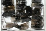 "Wholesale Lot: 20 Lbs Cut base Smoky Quartz Crystals (2-4"") - Brazil - #77824-2"