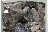 "Wholesale Lot: 25 Lbs Smoky Quartz Crystals (2-4"") - Brazil - #77826-1"