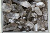 "Wholesale Lot: 25 Lbs Smoky Quartz Crystals (2-4"") - Brazil - #77826-2"