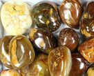 Wholesale Lot: 25 Lbs Polished Carnelian Agate - 23 Pieces - #77915-1