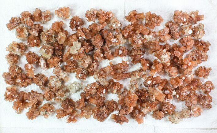 Wholesale Lot: Small Twinned Aragonite Crystals - 118 Pieces