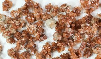 Wholesale Lot: Small Twinned Aragonite Crystals - 136 Pieces For Sale, #78107