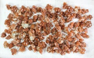 Buy Wholesale Lot: Small Twinned Aragonite Crystals - 121 Pieces - #78109