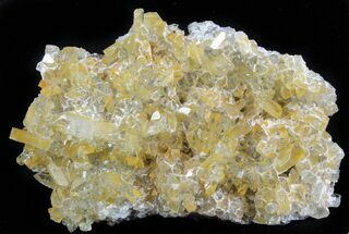 "Buy 4.1"" Plate Of Gemmy, Chisel Tipped Barite Crystals - Mexico - #78139"