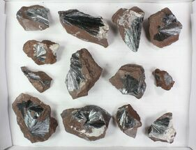 Buy Wholesale Lot: Metallic Pyrolusite on Matrix - 13 Pieces - #78037