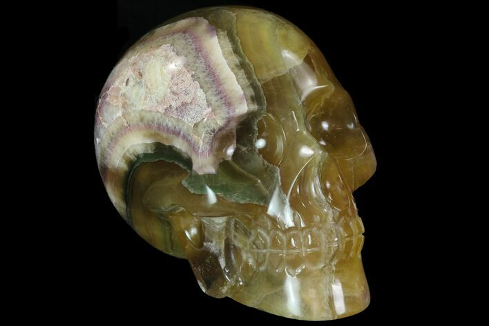 "6.7"" Carved, Yellow/Green/Purple Fluorite Skull - Argentina"