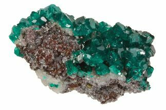 Dioptase - Fossils For Sale - #78702