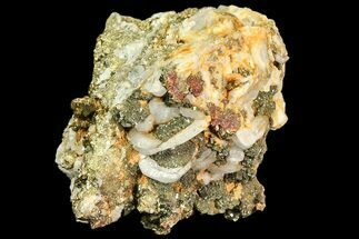 Pyrite, Calcite & Quartz - Fossils For Sale - #80364