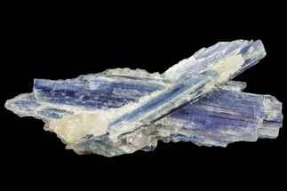 "Buy 4.3"" Vibrant Blue Kyanite Crystal In Quartz - Brazil - #80380"