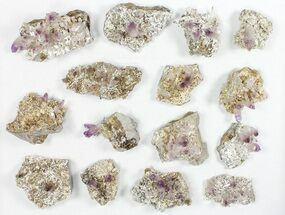 "Buy Lot: 2-3.5"" Veracruz Amethyst Clusters - 15 Pieces - #80635"