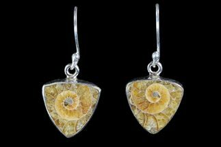 Buy Fossil Ammonite Earrings - Sterling Silver - #81619