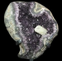 Quartz var. Amethyst  - Fossils For Sale - #81864