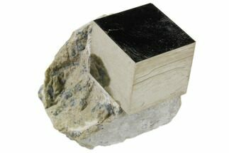 Pyrite - Fossils For Sale - #82065