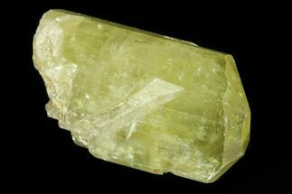 "Buy 1"" Lustrous Yellow Apatite Crystal - Morocco - #82456"