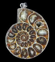 Fossil Ammonite Pendant - 110 Million Years Old For Sale, #83129