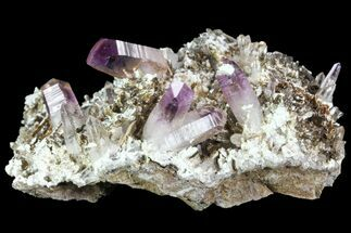 Quartz var. Amethyst - Fossils For Sale - #84393