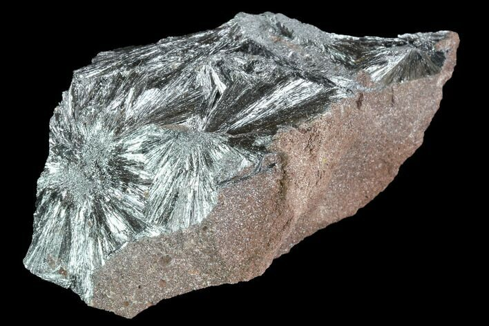 "3.4"" Metallic, Needle-Like Pyrolusite Cystals - Morocco"