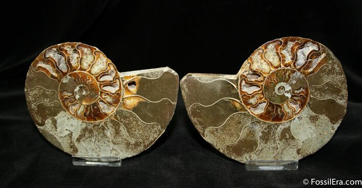 4.7 Inch Polished Pair From Madagascar