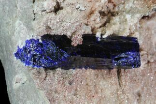 Buy Azurite Crystals on Druzy Quartz - Morocco - #90334