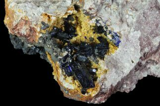 Azurite  - Fossils For Sale - #90336