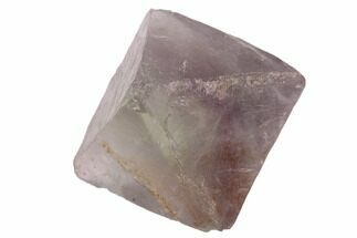Fluorite - Fossils For Sale - #90936