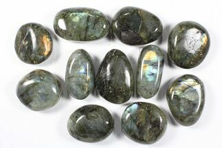 Labradorite - Fossils For Sale - #90525