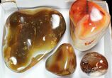 Wholesale Lot: 15lbs Colorful, Polished Carnelian Agate - 9 Pieces - #91850-2