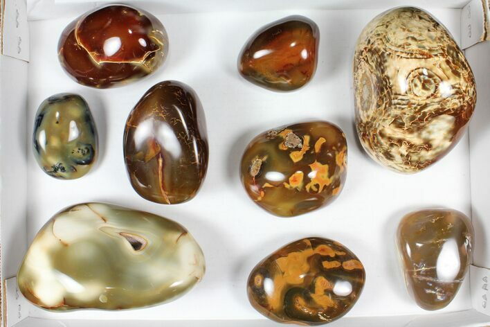 Wholesale Lot: 11 lbs Polished Carnelian Agate - 9 Pieces
