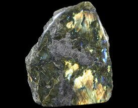 Labradorite - Fossils For Sale - #92049