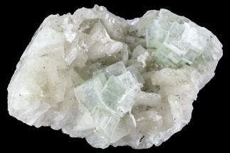 "2.6"" Green Apophyllite on Stilbite - India For Sale, #92246"